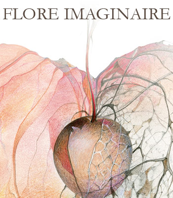 bt-flore-imaginaire
