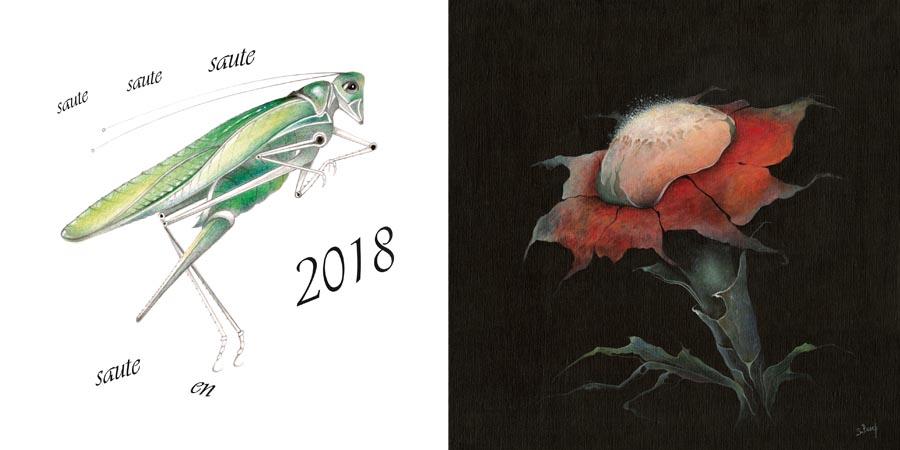 Meilleurs voeux 2018 de Sabine Van op den Bosch