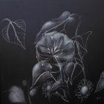 SOLEIL DE MINUIT - Dessin crayon - 50 X 50 cm