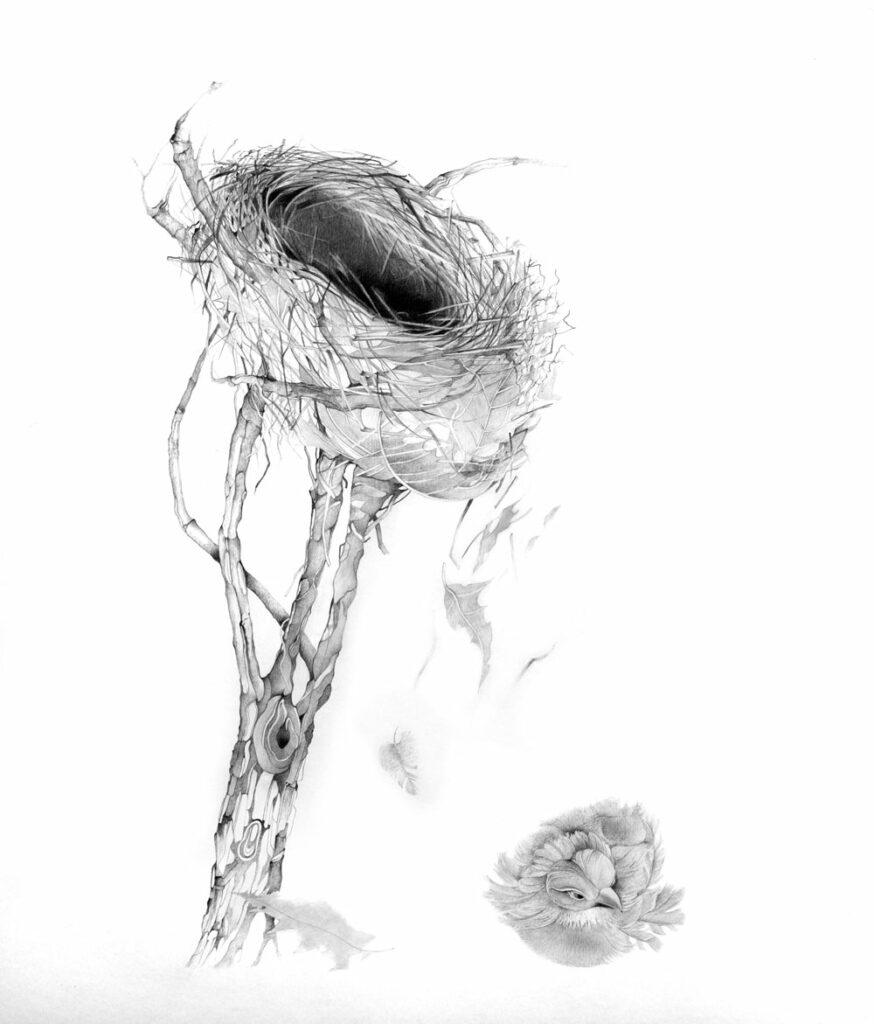 UN OISEAU POUR LE CHAT - dessin crayon sur papier - 60 X 42 cm